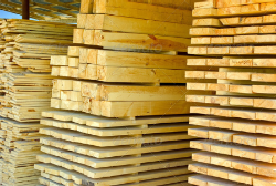 Trio Forest Lumber Stacks
