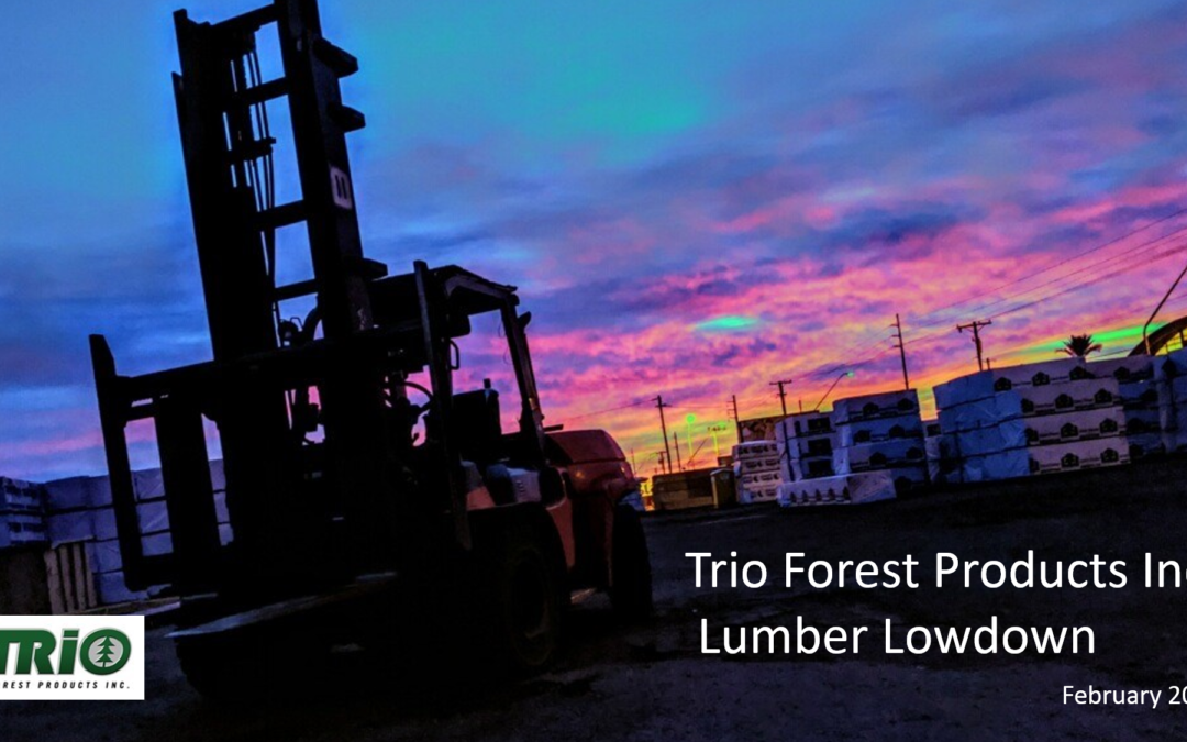 February 24, 2020: The Lumber Market Today – The Lumber Market Continues to Spike Up